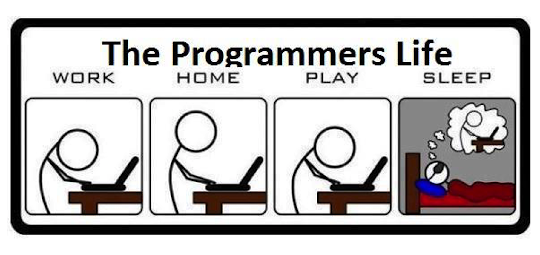 The Programmer's Life